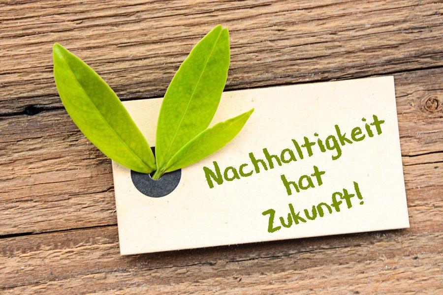 Nachhaltigkeit ShopFussballTrikot.de handelt für die Umwelt pflanzt Bäume